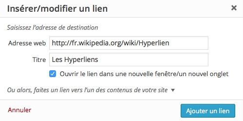 Lien externe ou mailto email dans WordPress